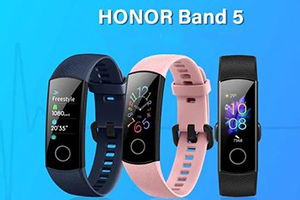 Does the Honor band 5 support Google Fit and Google Pay